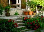 Terrasse_ancienne
