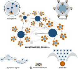 Social_business_design