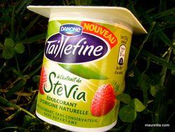 Stevia-taillefine-fraise