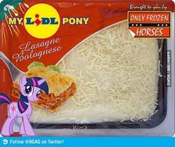 My-lidl-pony-lasagne